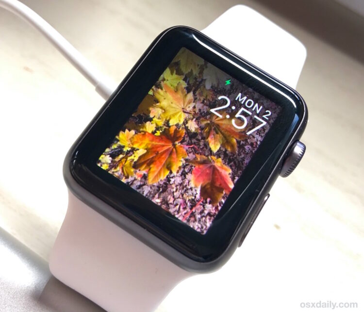 Comment copier des photos pour Apple Watch