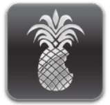 Jailbreak iPhone iOS 4.3.1 avec PwnageTool