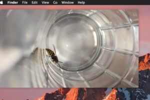 Comment utiliser Picture in Picture Video Player sur Mac